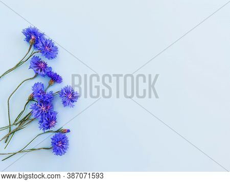 Flower Frame / Border Of Blue Flowers On A Pastel Blue Background. Top View, Copy Space. Empty Space