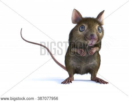 3d Rendering Of A Cute Mouse Standing Up On Two Legs And Looking. White Background.
