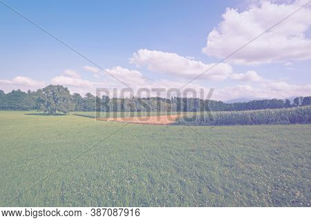 Deserted Wheat And Corn Fields In Bavaria In Faded Color Effect