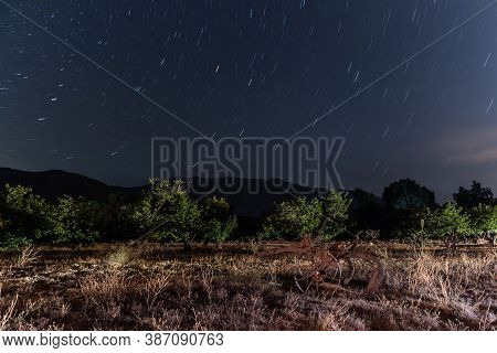 Constellations Of Astronomy Streak In Circular Patterns Over The Tree Orchard With Mountain Horizon