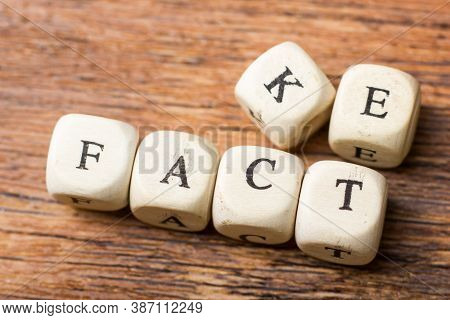 Words Fake And Fact Written On Wooden Cubes On The Wood Background.