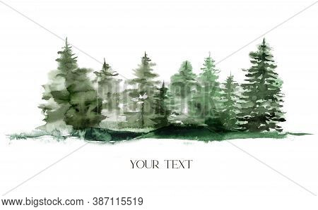 Watercolor Winter Foggy Evergreen Forest. Hand Painted Fir Trees Illustration Isolated On White Back