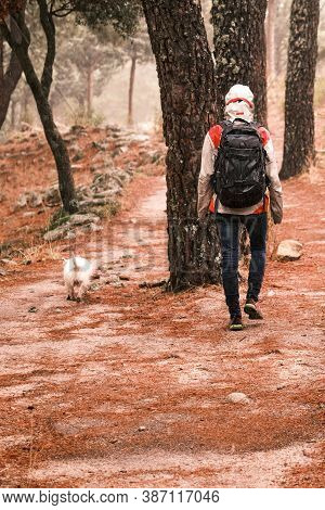 Person With Raincoat And Backpack Walking His Dog In The Field On A Rainy Day