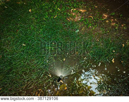Sprinkler In Park. Watering System With Big Puddle About On The Ground With Sparce Grass