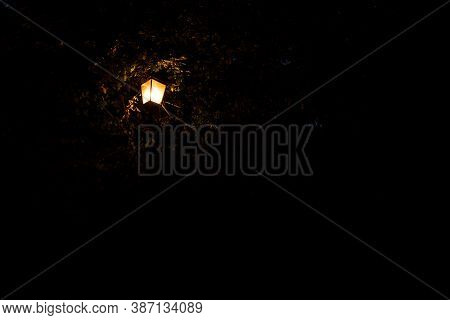 Orange Street Lantern Illumination In Black Night Outdoor Environment Background Space With Empty Co