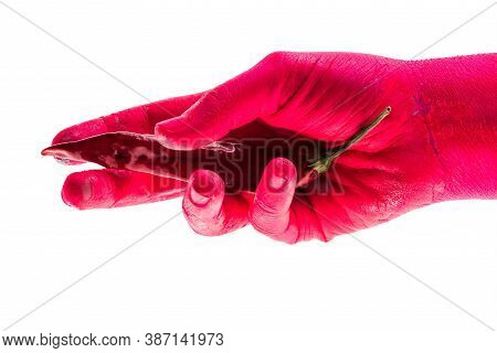 Red Hot Pepper, Chili Pepper In Red Hand. Concept Of And Cooking, Colored Vegetables And Body Of Wom