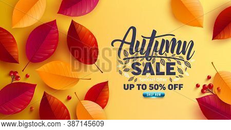 Autumn Sale Poster And Banner Template With Autumn Colorful Leaves On Yellow Background.greetings An