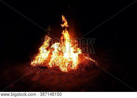 Fire Flame In Dark Night In A Field