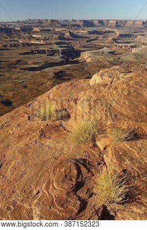 Green River Overlook In Warm Sunlight, Canyon Lands National Park, Utah