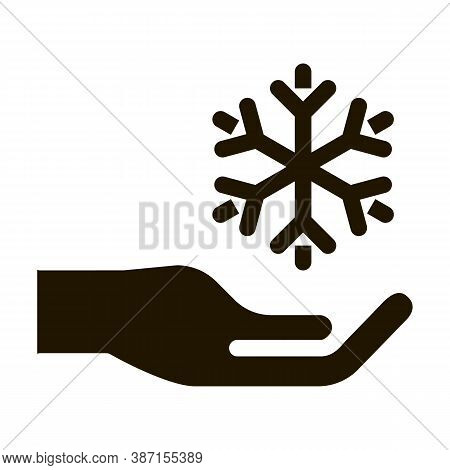 Fancy Snowflake Sign Glyph Icon Vector. Fancy Snowflake Sign Sign. Isolated Symbol Illustration