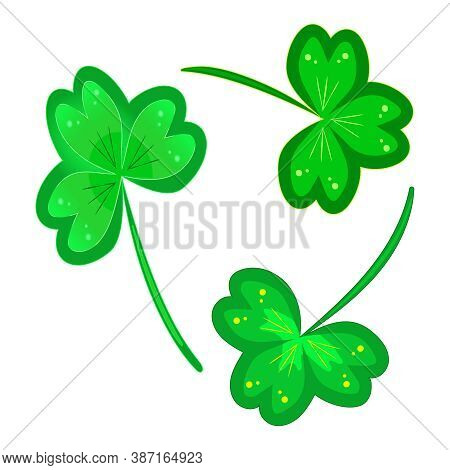 Clover Isolated On White Background. Lucky Three Leaf Clovers Or Shamrocks Set Icon For St Patricks