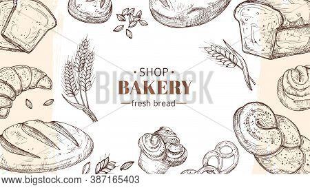 Sketch Bakery Background. Bread, Fresh Buns And Rolls, Wheat Ears Banner. Fresh Food Shop Or Cafe Ve
