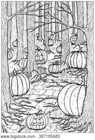 Black And White Vector Illustration With Path Or Trailway, Scary Pumpkin Head And Lanterns Hiding Be