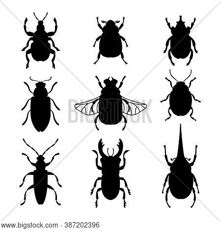 Bugs Silhouettes Set. Black Stencils Shapes Of Beetles, Contours Of Insects, Vector Illustration Out