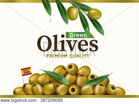 Green Olive Label With Realistic Olive Branch, Design For Canned Olives Packaging And Olive Oil. Eps