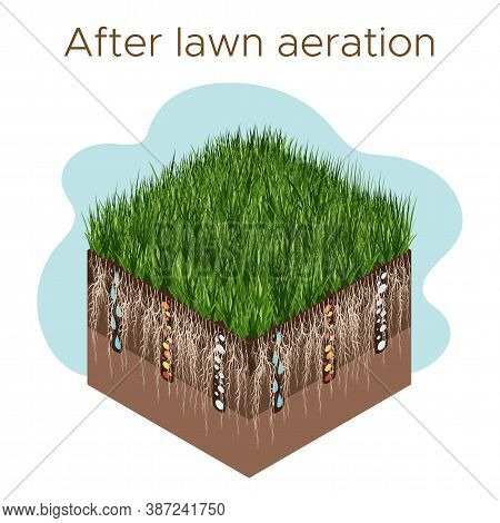 Lawn Care - Aeration And Scarification. Labels By Stage- After. Intake Of Substances-water, Oxygen,