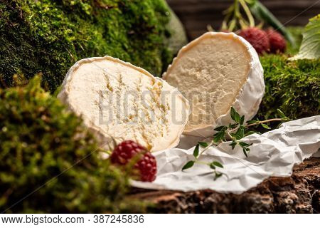 Camembert Or Brie French Soft Cheese With Berry, Thyme. Fresh Brie Cheese With White Mold. Banner, C