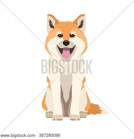 Vector Portrait Of A Funny Akita Inu Dog Isolated On White Background