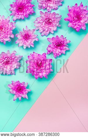 Pink Flowers Border Flat Lay On Cerulean Blue, Green Ash And Pink Background. Vibrant Blooming Top V