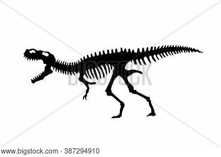 Vector Silhouette Of Dinosaurs Skeleton. Hand Drawn Dino Skeleton. Dinosaur Bones, Exhibit Fossils I