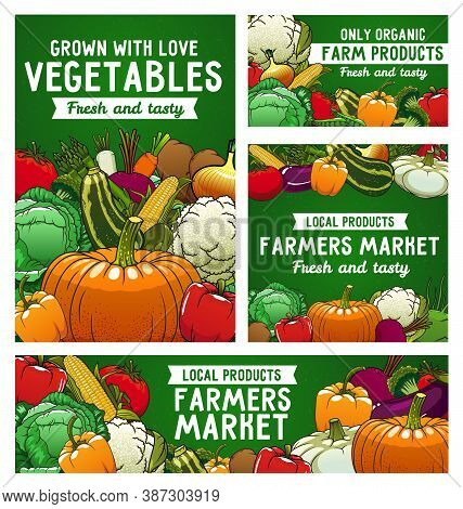 Vegetables Vector Posters, Farmer Market Veggies Tomato, Bell Pepper And Cauliflower With Beetroot.