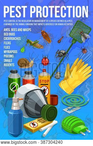 Pest Control, Insect Protection Service Vector Poster. Disinsection, Pests Extermination Control. To