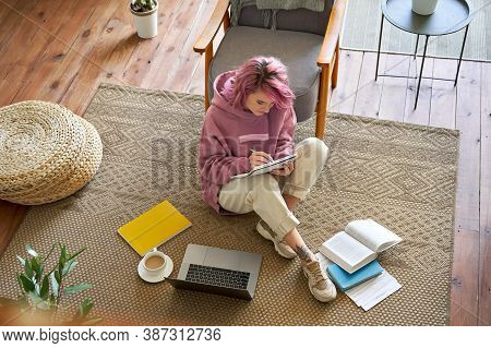Hipster Woman School College Student Pink Hair Studying Online On Laptop Writing Video Conferencing