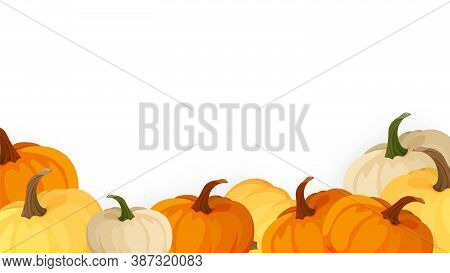 Banner, Poster, Card Or Frame Design With Pumpkin Fruit. Autumn Harvest. Autumn Halloween Pumpkins.