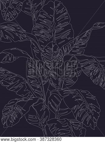 White Lined Art Banana Leaves And Tree Is Tropical Plant On Midnight Blue Background, Flat Line Vect