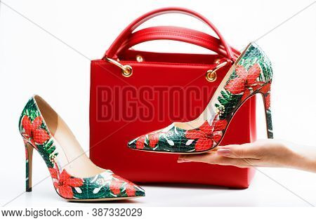 High Heel Women Shoes And A Bags. Stylish Red Womens Leather Sandals Shoes. Woman Bag. Ladies Bag An