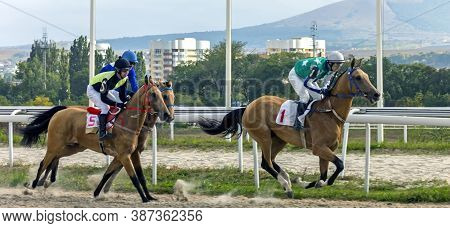 Pyatigorsk,russia - September 27,2020:horse Race For The Race Season Closing Prize On Pyatigorsk Hip