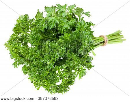 Green Fresh Parsley Isolated On White Background. Parsley Bunch. Full Depth Of Field