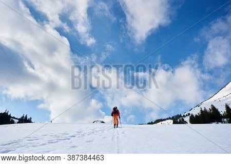 Back View Of Skier Tourist Backpacker Hiking On Skis Up Hill To Horizon On Background Of Blue Sky An