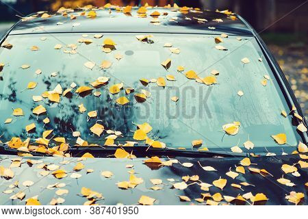 Car Covered With Autumn Leaves. Autumn Background. Rainy Autumn Weather. Yellow Leaves Fall On The C