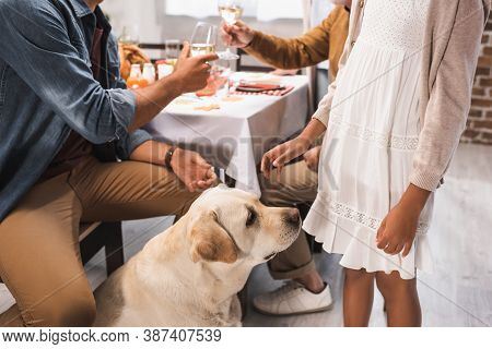 Partial Of African American Girl And Golden Retriever Near Family Clinking Wine Glasses During Thank
