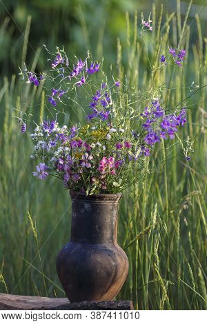 Flower Bouquet In Pot. Vintage Rural Style Botany. Various Colorful Blossom Of Spring Flowers. Beaut