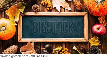 Autumn Background. Slate Board, Pumpkins And Autumn Leaves