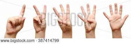 The Kids Hands Show Fingers. Finger Points Close Up On White Background.