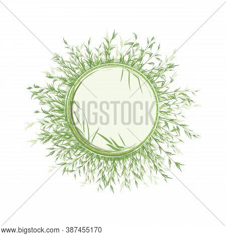 Bamboo Forest In The Form Of A Round Decorative Frame With A Watercolor Effect. Space For Text Or Lo