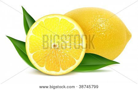 Vector illustration of fresh lemons with leaves