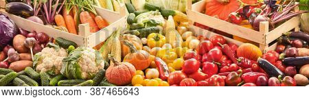 Fresh Organic Vegetables. Food Background