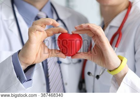 Doctors Man And Woman With Phonendoscope Hold Red Heart In Their Hand. Diseases Of The Cardiovascula