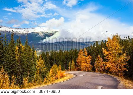 The Rocky Mountains of Canada. Magnificent mountain highway among coniferous forests and orange autumn aspens. Indian summer in Jasper Park. Mount Edith Cavell Road