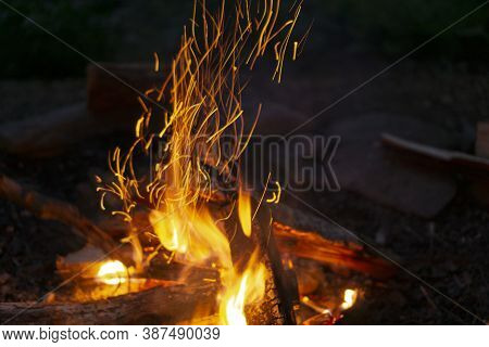 Close Up Of Flames And Sparkles From Campfire At Night. Burning Logs Of Wood And Sticks