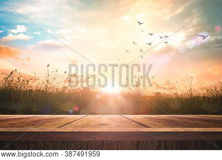 World Environment Day Concept: Wooden Restaurant Table With Meadow Sunrise Background