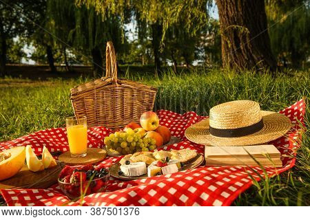 Picnic Blanket With Delicious Food And Juice In Park