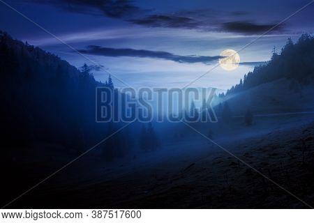 Morning Mist In Apuseni Natural Park At Night. Valley Full Of Fog In Full Moon Light. Beautiful Land