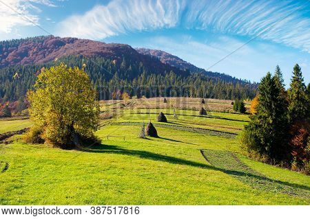 Carpathian Rural Landscape In Autumn. Beautiful Countryside Scenery On A Sunny Day. Haystacks On The