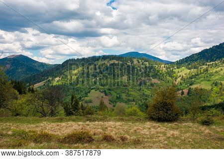 Mountain Landscape In Spring. Rainy Weather. Cloudy Sky