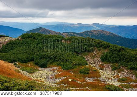 Autumn Scenery In High Mountains. Trees On The Rocky Slopes And Hills. Colorful Nature Scenery With